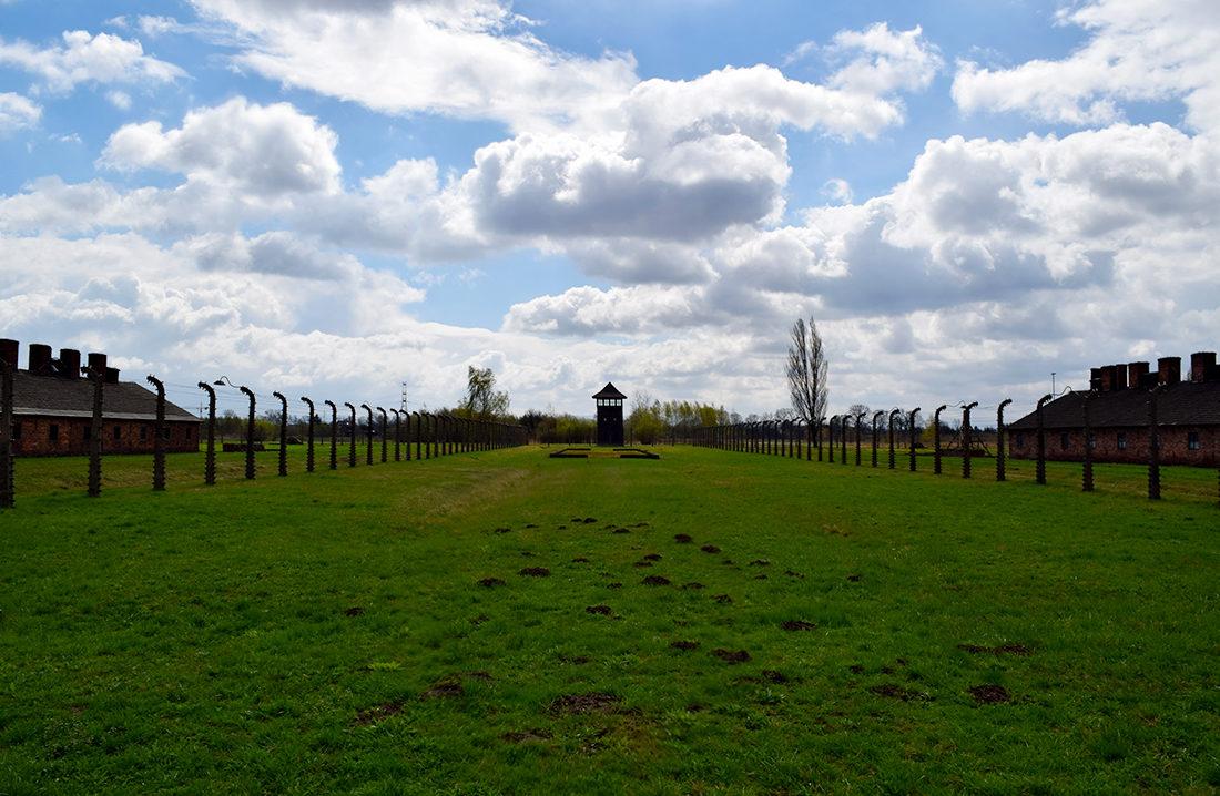 Alambradas y torre de vigilancia en Auschwitz - Birkenau