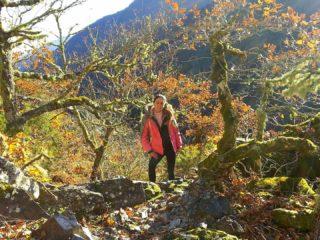 Bosque de Muniellos ruta circular