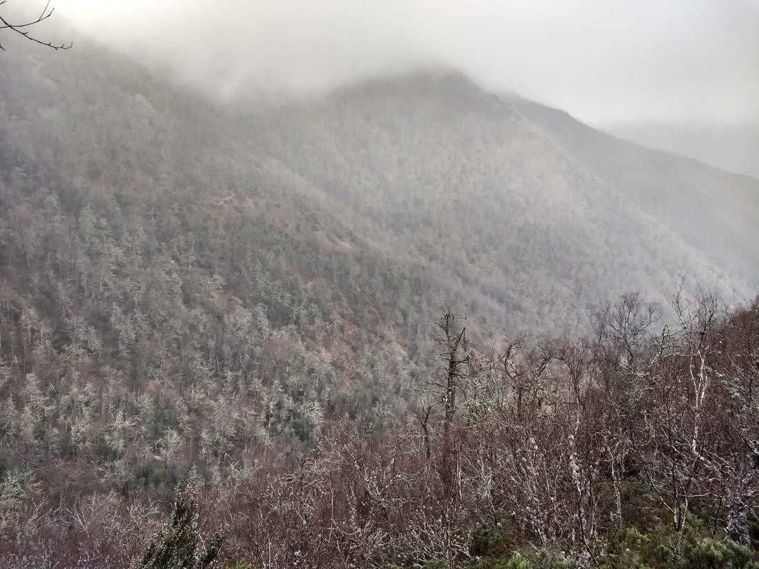 Vista de montes en Muniellos
