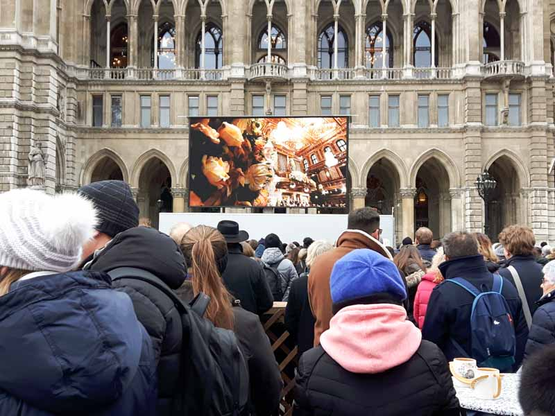 Concierto Año Nuevo Viena en ayuntamiento
