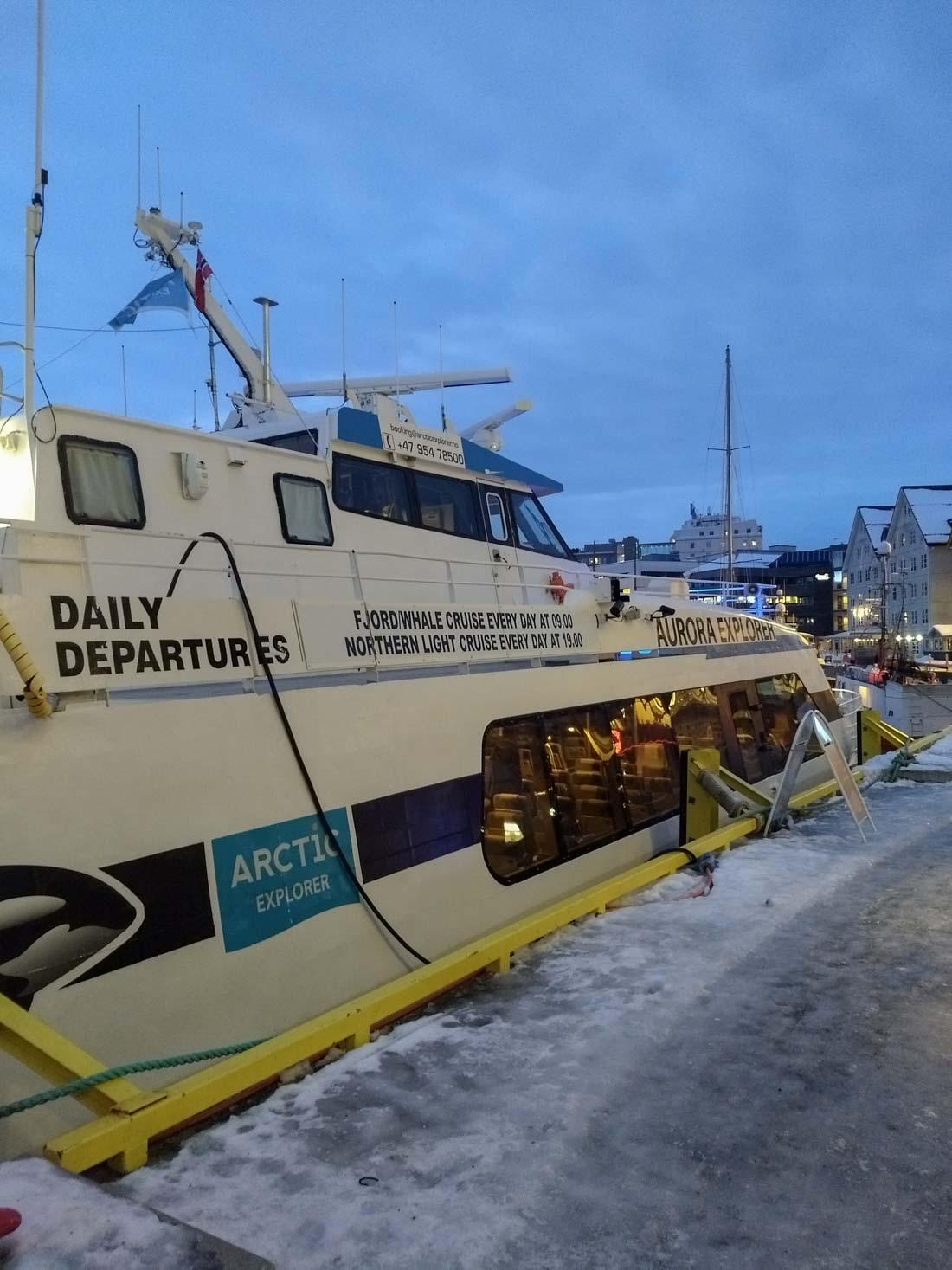 Tromso ver orcas
