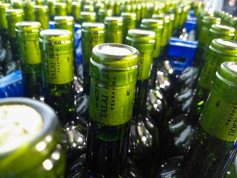 Botellas de txakoli Talai Berri