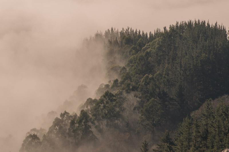 Niebla en el Picu Pienzu