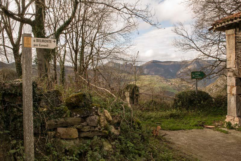 Dolia Asturias