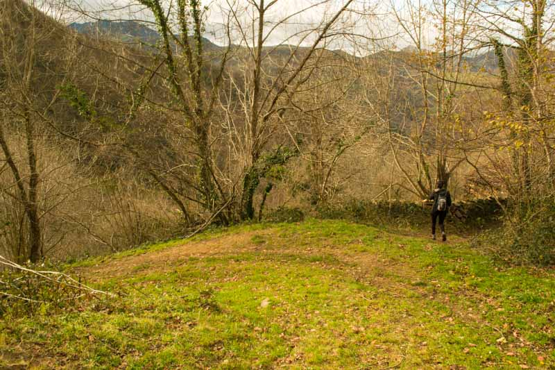 Camino en Belmonte de Miranda