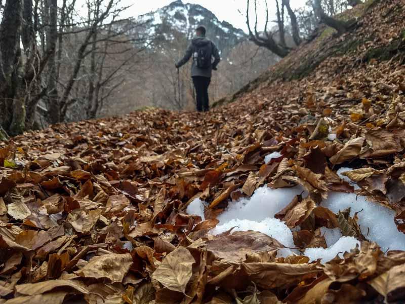 Cascada Asturias