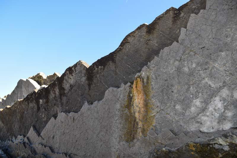 Fósiles en Zumaia