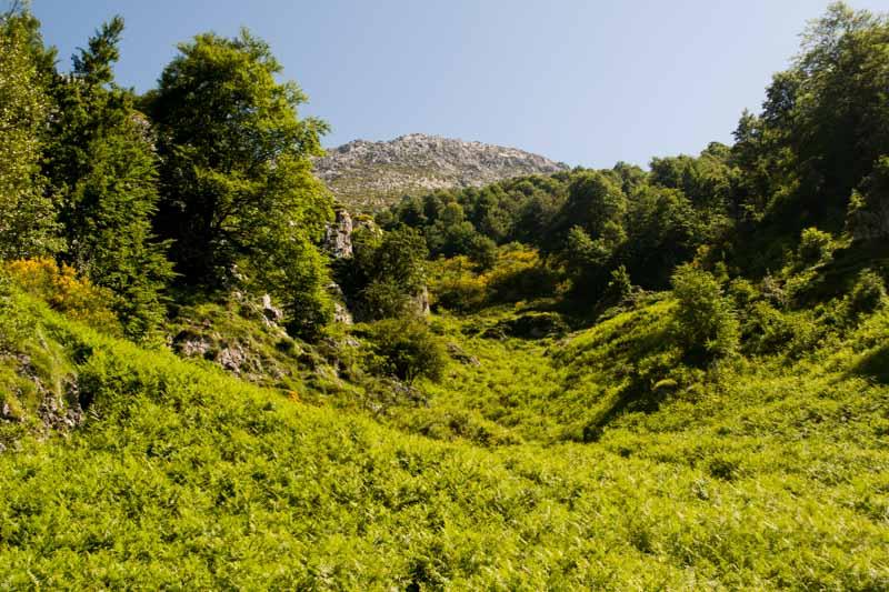 Tiatordos en Asturias