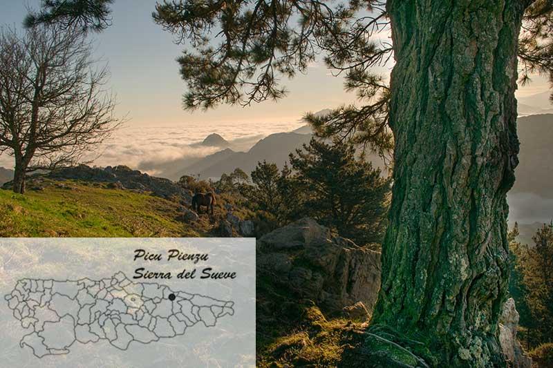 Dónde está el Picu Pienzu en el mapa de Asturias