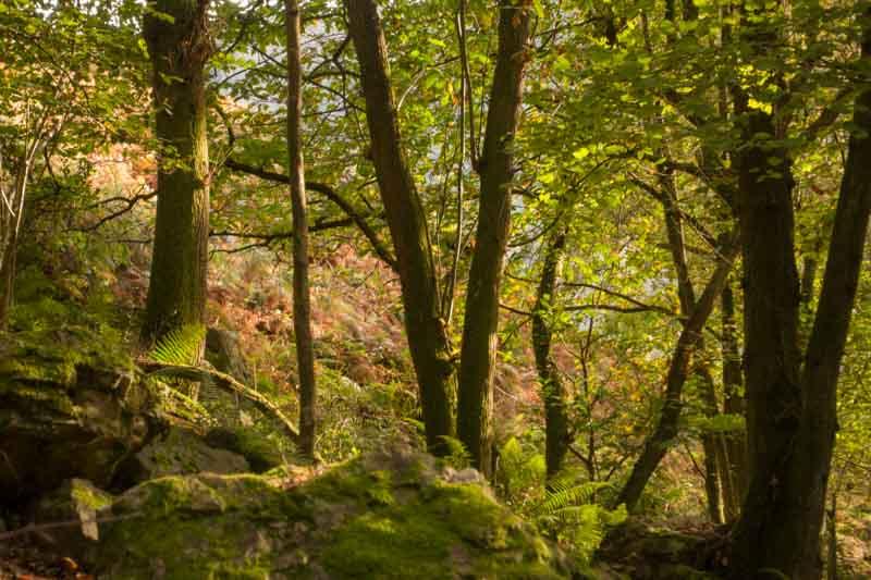 Cascadas de Guanga, rutas en Asturias
