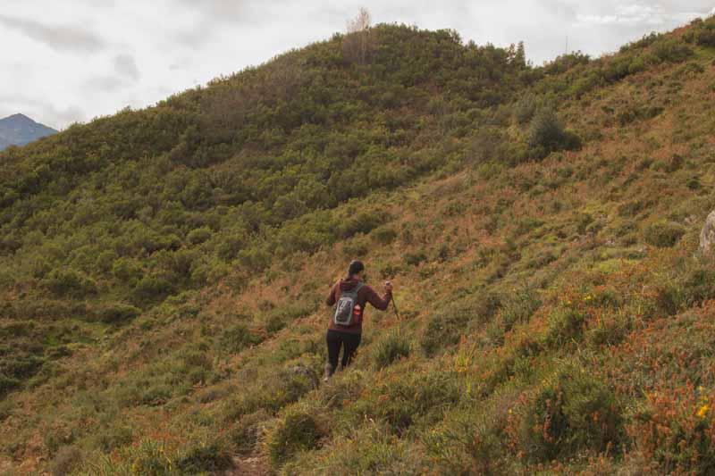 Ruta pico Cuyargayos