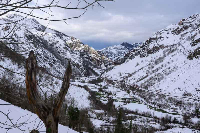 Panorámica al valle de Aller desde bosque el Gumial