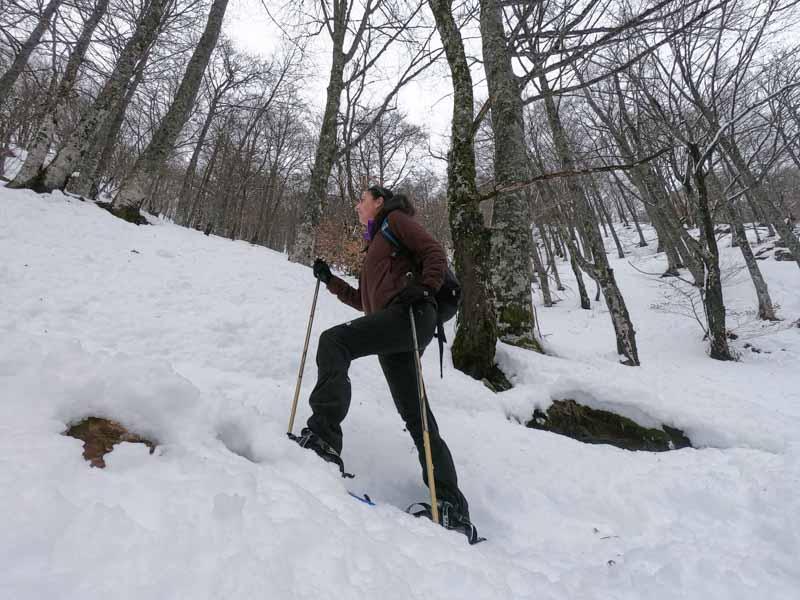 Raquetas de nieve en el bosque el Gumial
