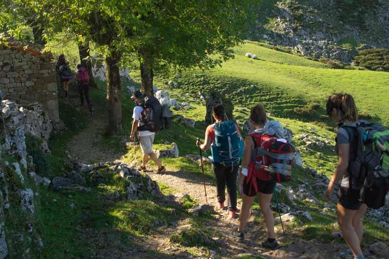 Majada de la Veguina Lagos de Covadonga