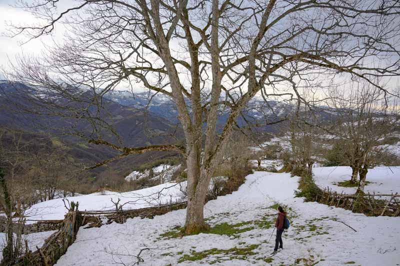 Rutas senderismo en concejo de Aller en Asturias