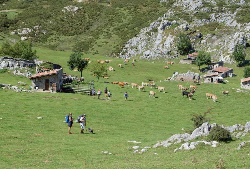 majada de Belbín Lagos de Covadonga