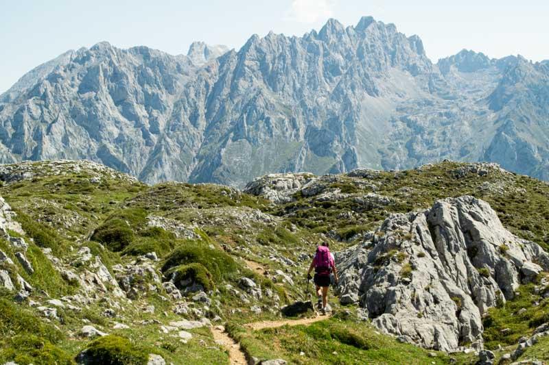 Camino a Vega de Ario con Macizo de los Urrieles al fondo, Picos de Europa