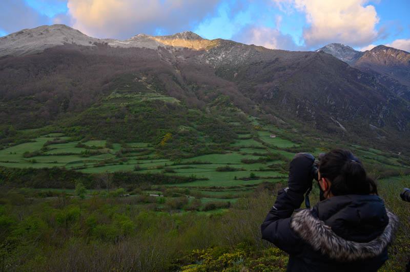 Avistamiento responsable de fauna salvaje en Somiedo, Asturias