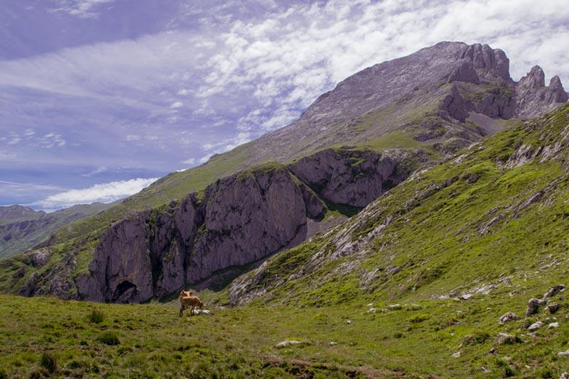 Paisaje Picos de Europa antes de Canal Amuesa